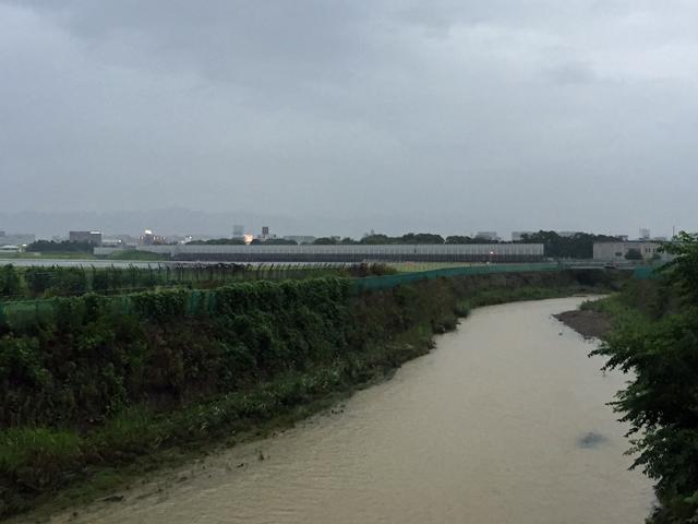 最近の記録的な豪雨 昨日は、一庫や箕面川ダムを放流していたから水位が上がっていたんですかね?